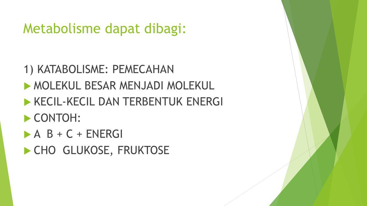 Metabolisme dapat dibagi: