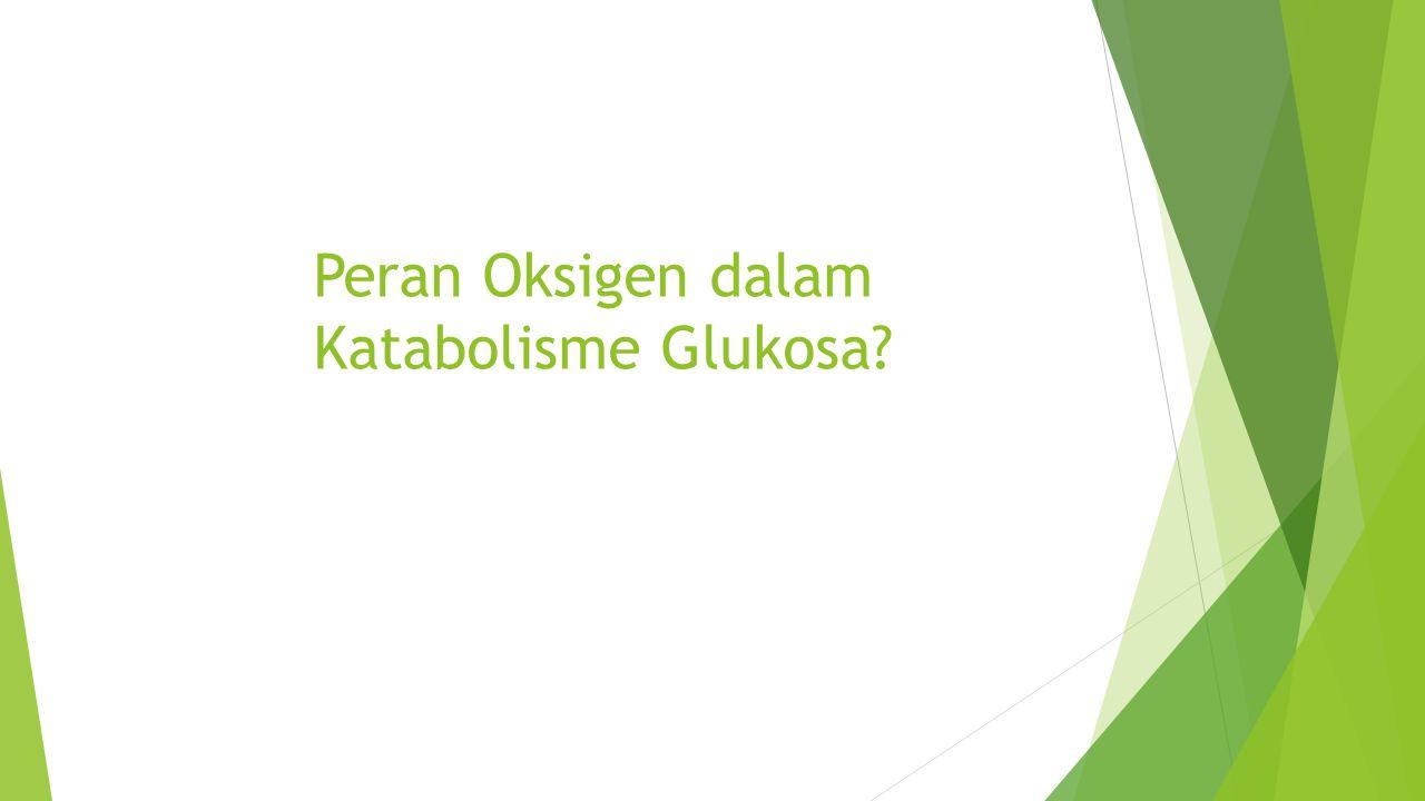 Peran Oksigen dalam Katabolisme Glukosa