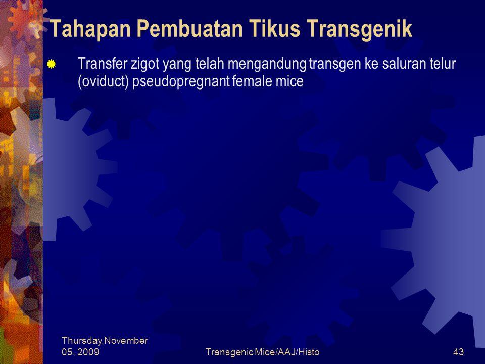 Tahapan Pembuatan Tikus Transgenik