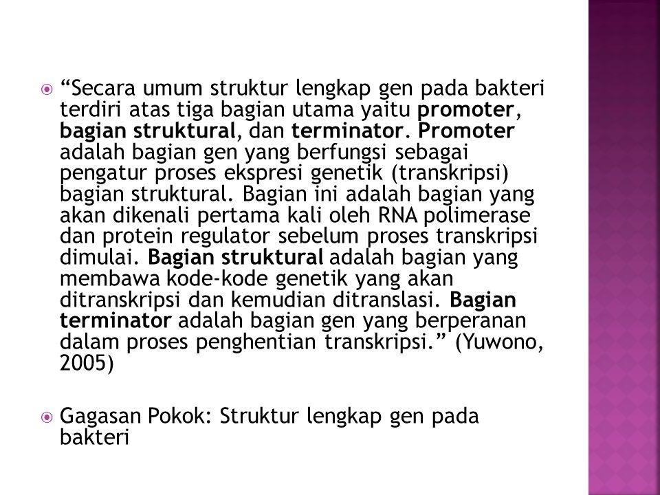 Secara umum struktur lengkap gen pada bakteri terdiri atas tiga bagian utama yaitu promoter, bagian struktural, dan terminator. Promoter adalah bagian gen yang berfungsi sebagai pengatur proses ekspresi genetik (transkripsi) bagian struktural. Bagian ini adalah bagian yang akan dikenali pertama kali oleh RNA polimerase dan protein regulator sebelum proses transkripsi dimulai. Bagian struktural adalah bagian yang membawa kode-kode genetik yang akan ditranskripsi dan kemudian ditranslasi. Bagian terminator adalah bagian gen yang berperanan dalam proses penghentian transkripsi. (Yuwono, 2005)