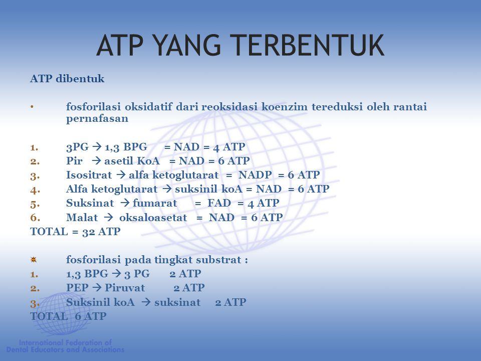ATP YANG TERBENTUK ATP dibentuk