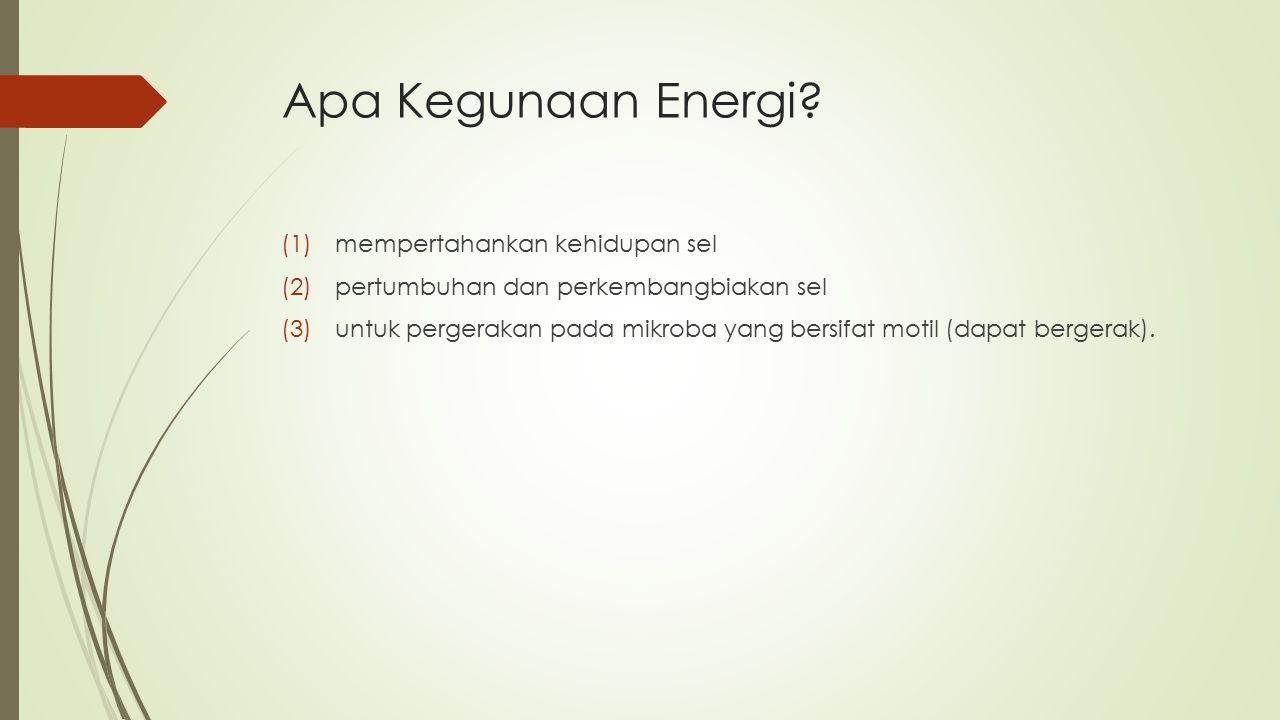 Apa Kegunaan Energi mempertahankan kehidupan sel