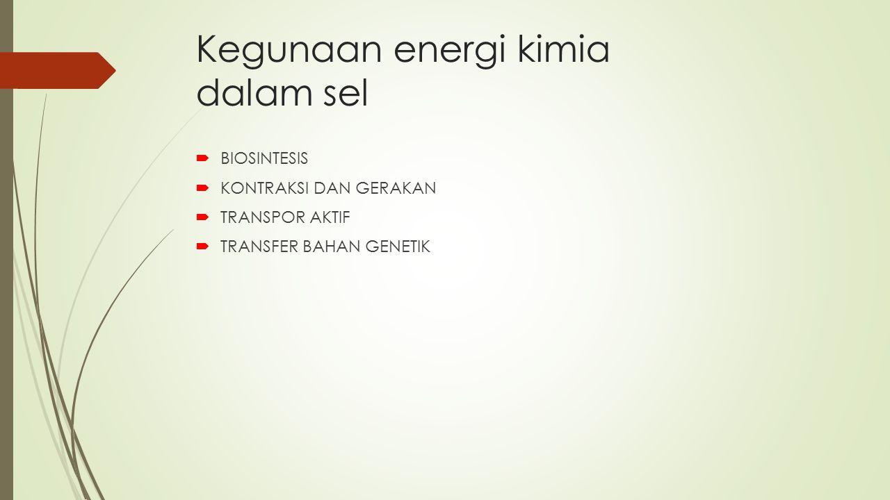 Kegunaan energi kimia dalam sel
