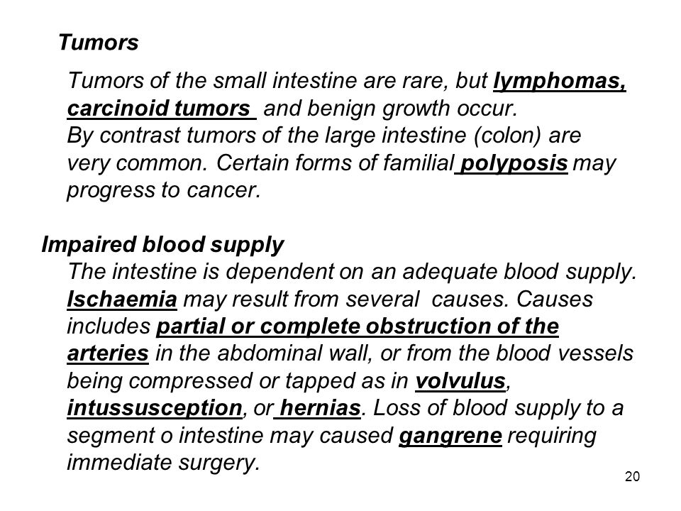 Tumors of the small intestine are rare, but lymphomas,