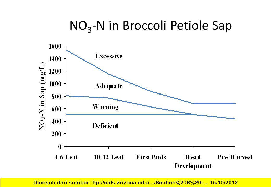 NO3-N in Broccoli Petiole Sap