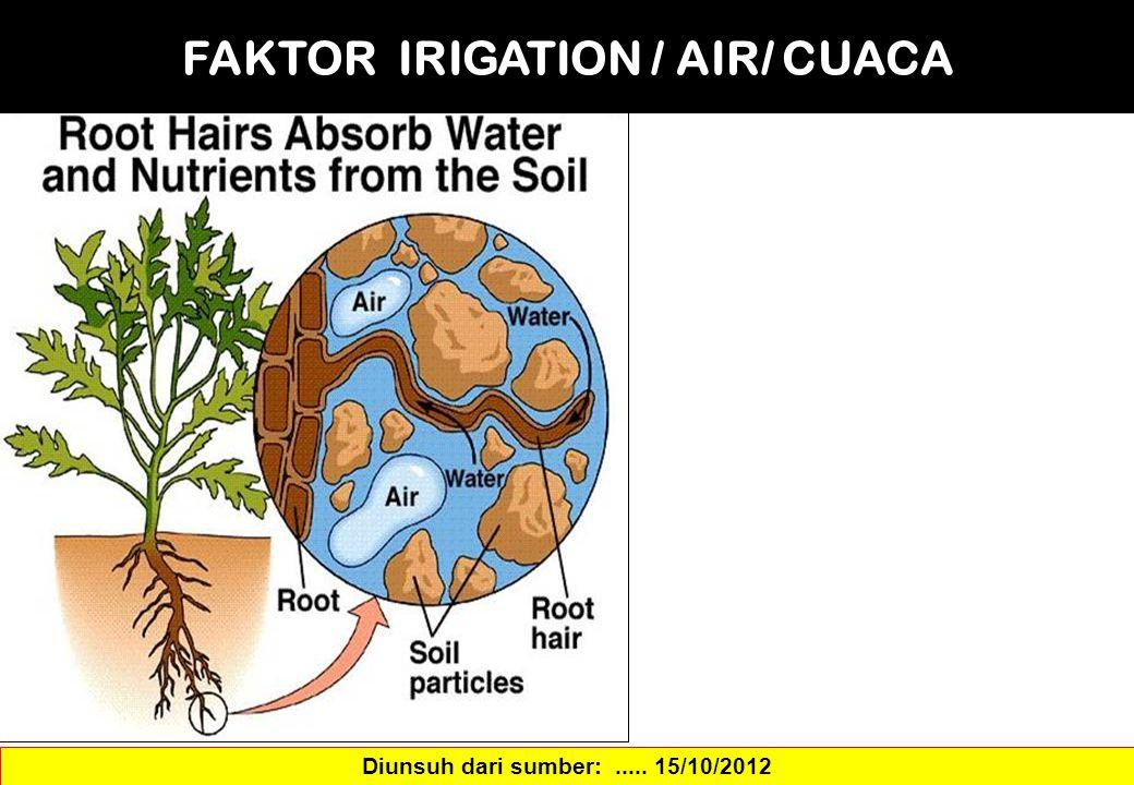 FAKTOR IRIGATION / AIR/ CUACA