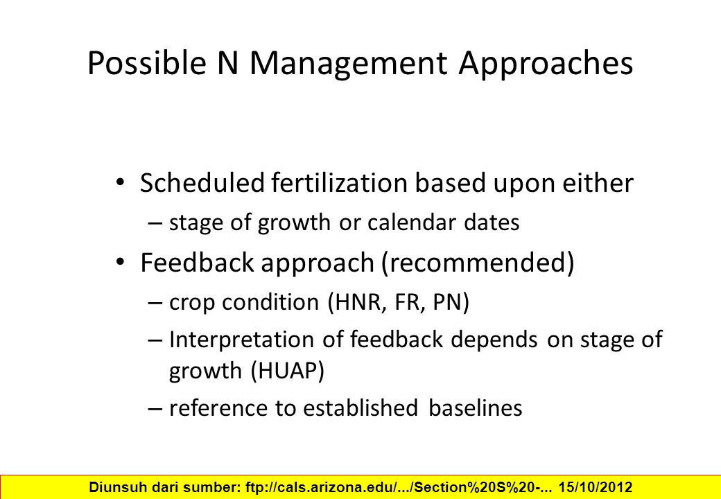 Possible N Management Approaches