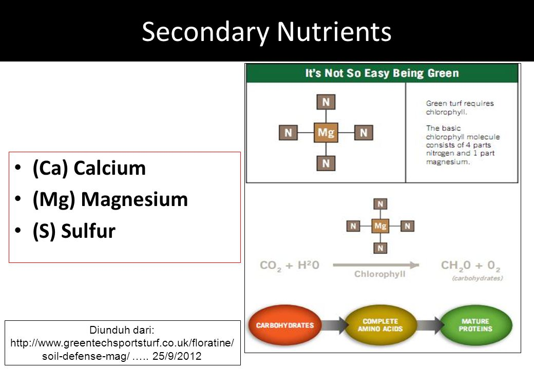 Secondary Nutrients (Ca) Calcium (Mg) Magnesium (S) Sulfur