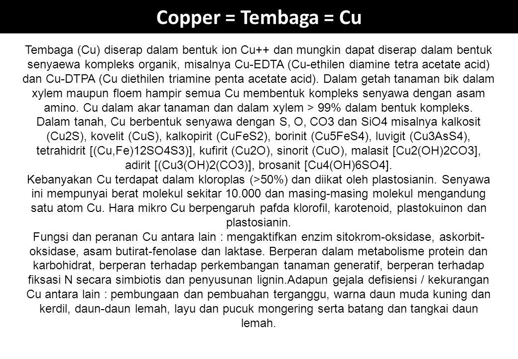 Copper = Tembaga = Cu