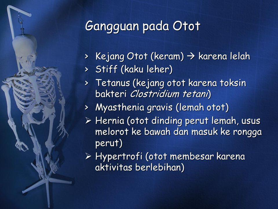 Gangguan pada Otot > Kejang Otot (keram)  karena lelah