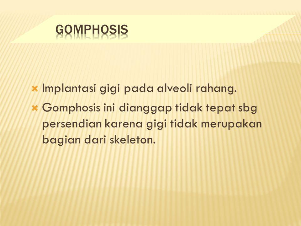 GOMPHOSIS Implantasi gigi pada alveoli rahang.