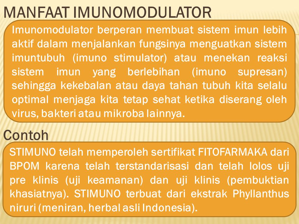 MANFAAT IMUNOMODULATOR