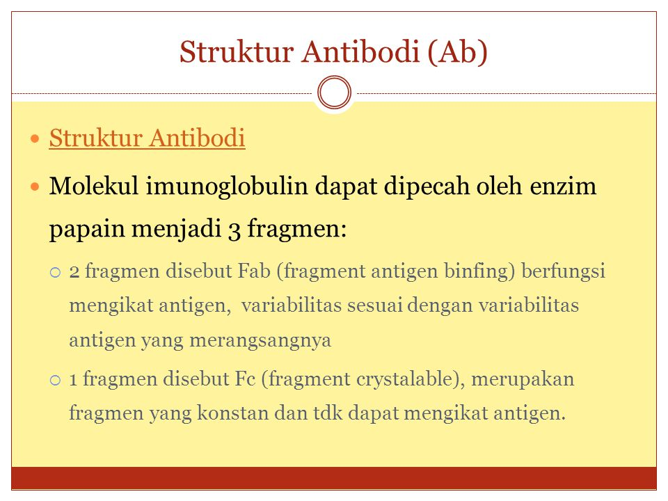Struktur Antibodi (Ab)
