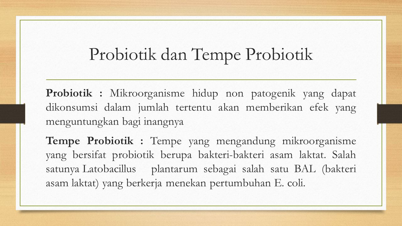 Probiotik dan Tempe Probiotik