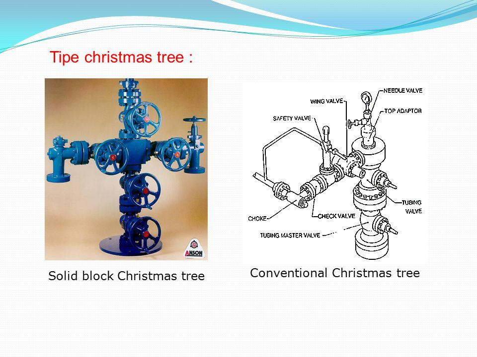 Tipe christmas tree : Conventional Christmas tree