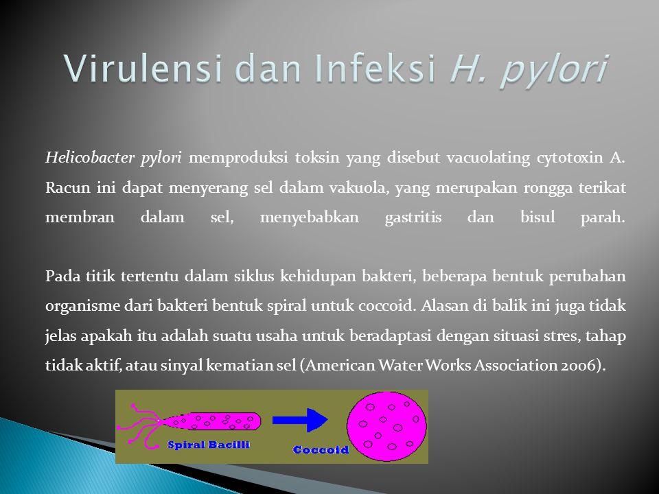 Virulensi dan Infeksi H. pylori