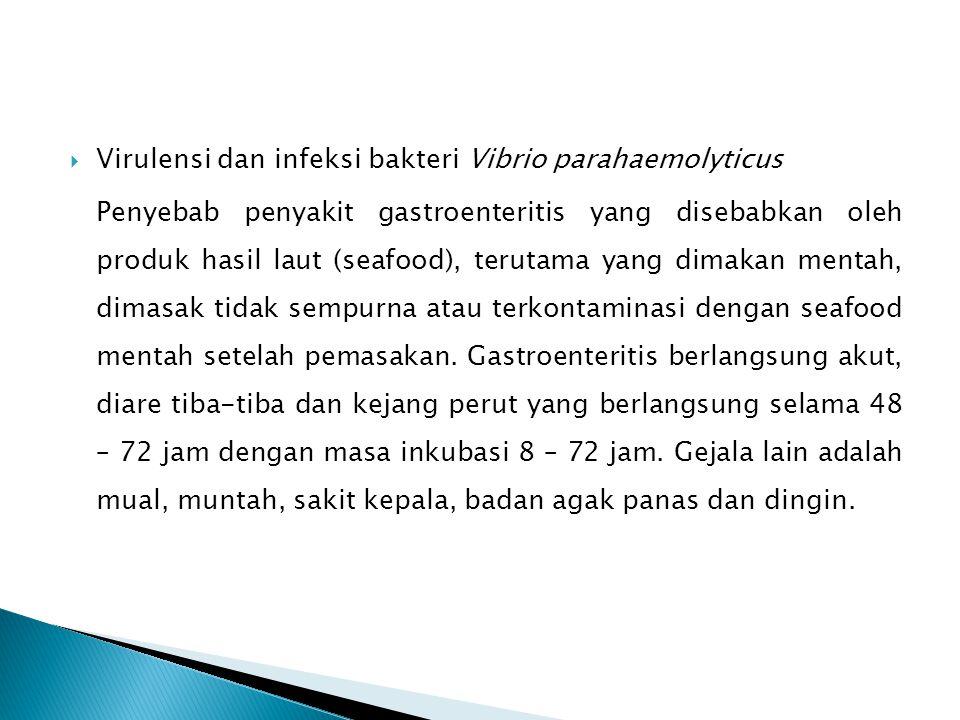 Virulensi dan infeksi bakteri Vibrio parahaemolyticus