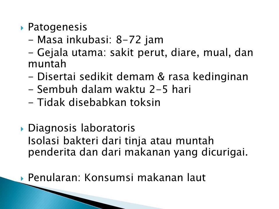 Patogenesis - Masa inkubasi: 8-72 jam. - Gejala utama: sakit perut, diare, mual, dan muntah. - Disertai sedikit demam & rasa kedinginan.