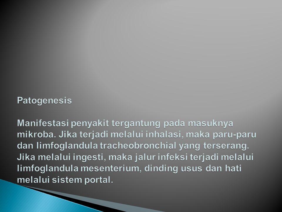 Patogenesis. Manifestasi penyakit tergantung pada masuknya mikroba
