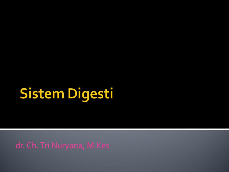 Sistem Digesti dr. Ch. Tri Nuryana, M.Kes