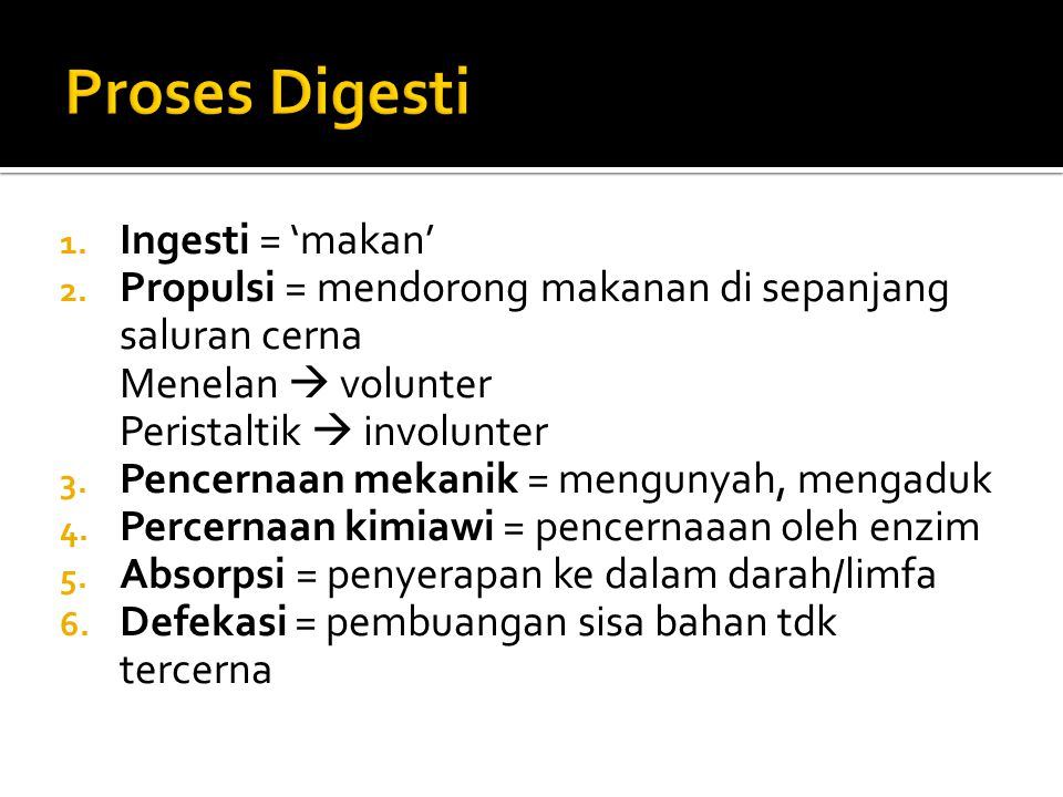 Proses Digesti Ingesti = 'makan'