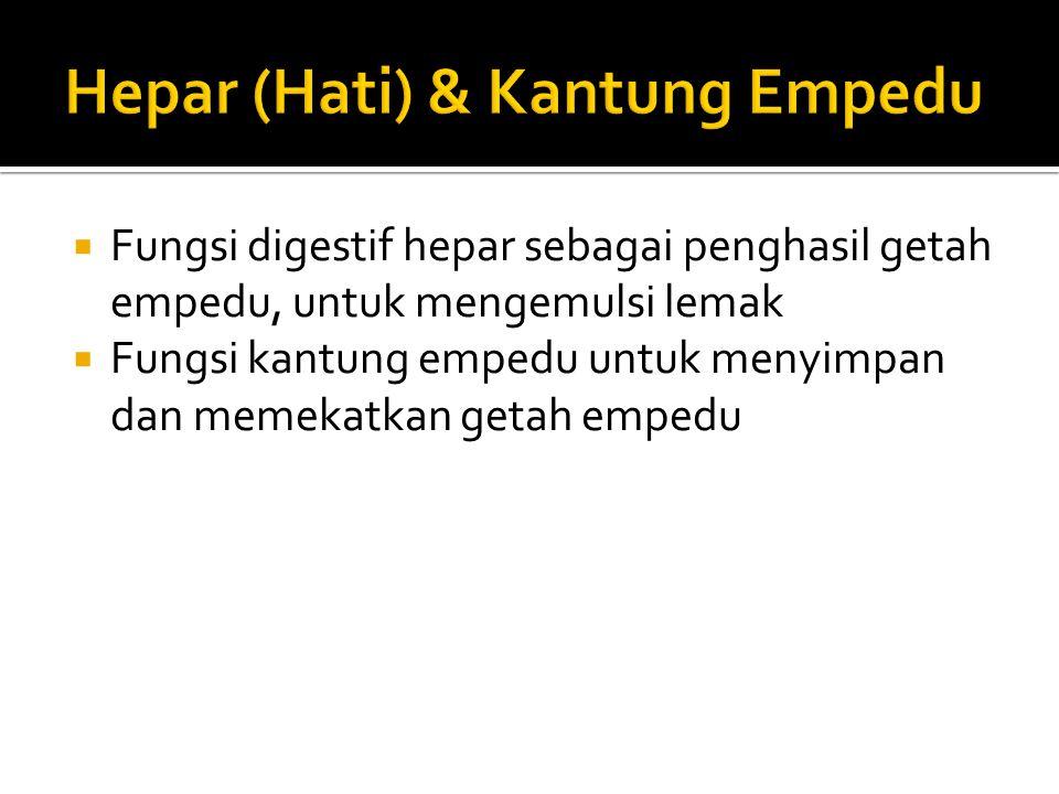 Hepar (Hati) & Kantung Empedu