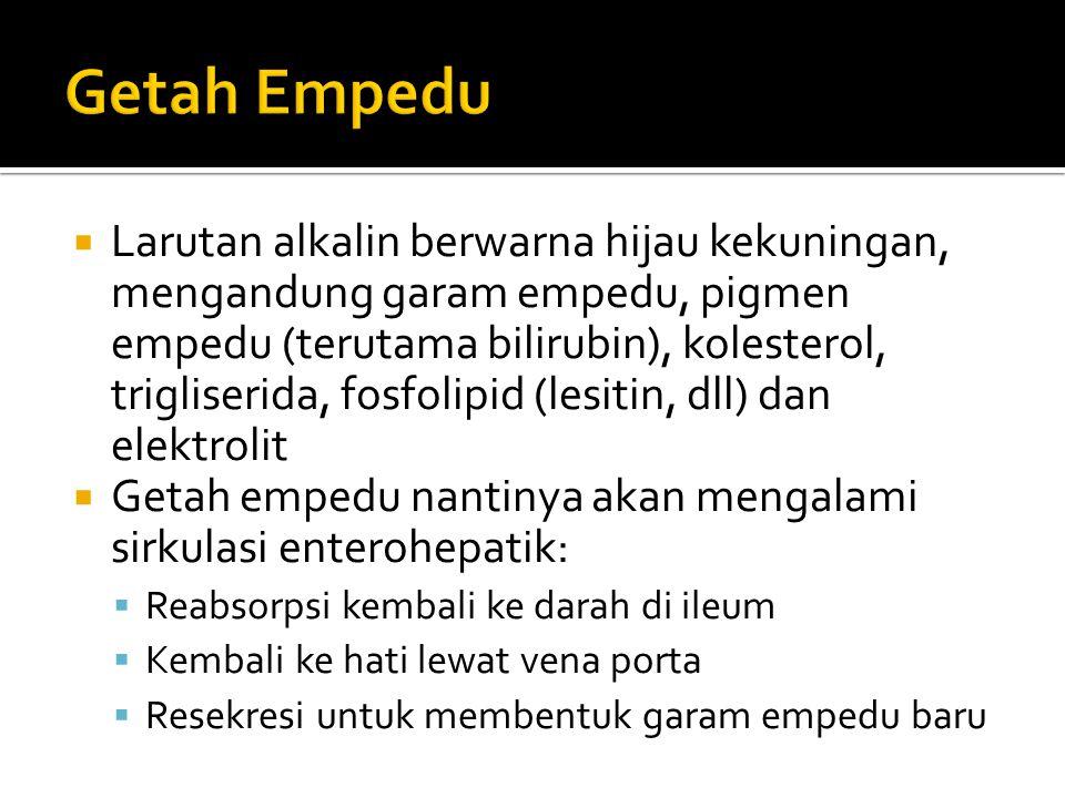 Getah Empedu