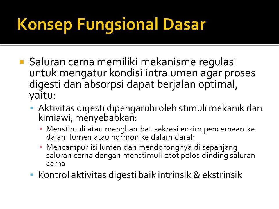 Konsep Fungsional Dasar