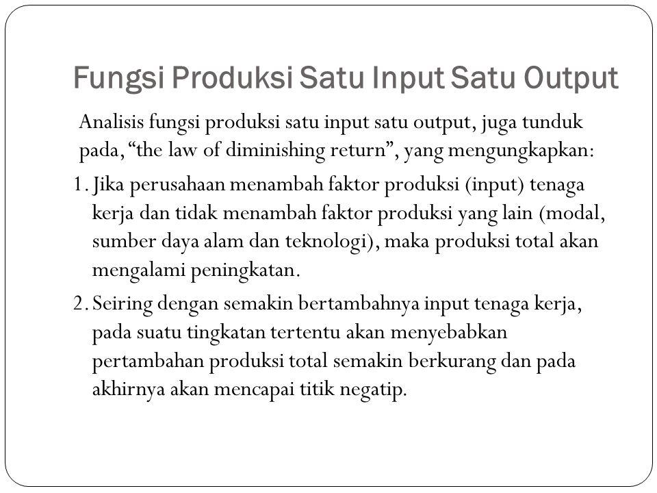 Fungsi Produksi Satu Input Satu Output