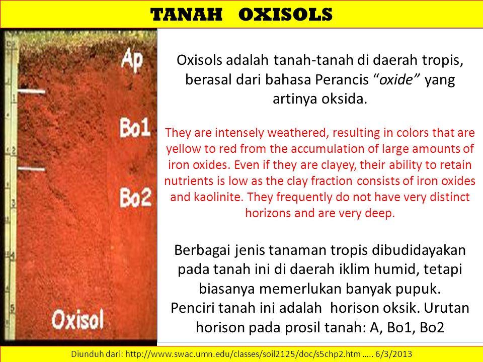 TANAH OXISOLS Oxisols adalah tanah-tanah di daerah tropis, berasal dari bahasa Perancis oxide yang artinya oksida.