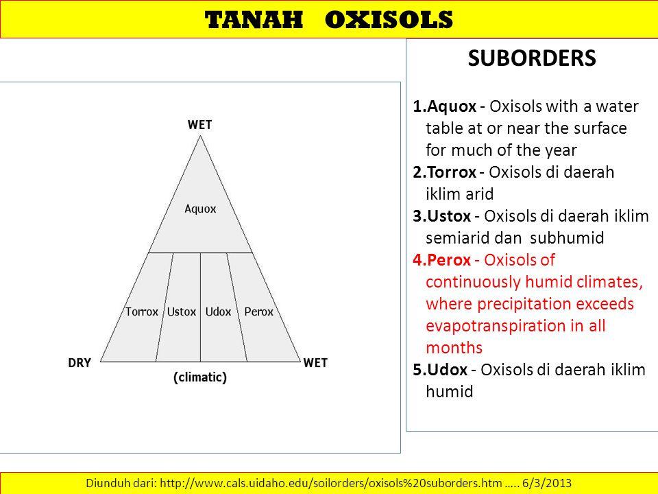 TANAH OXISOLS SUBORDERS