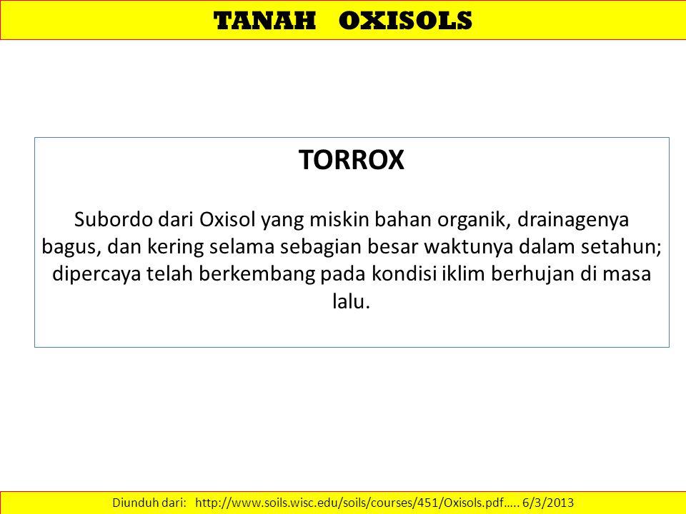 TANAH OXISOLS TORROX.