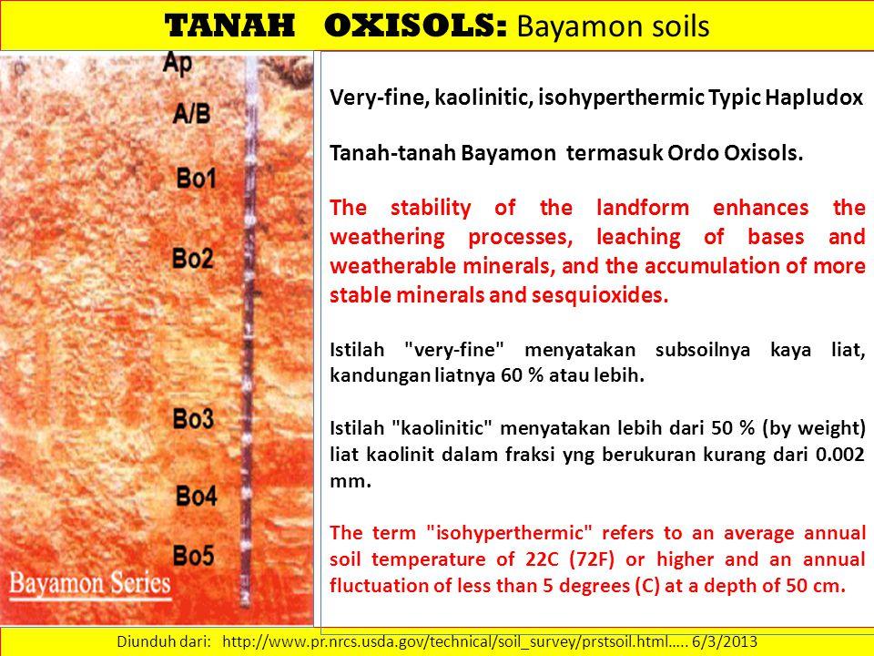 TANAH OXISOLS: Bayamon soils