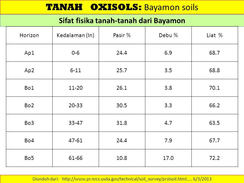 Sifat fisika tanah-tanah dari Bayamon