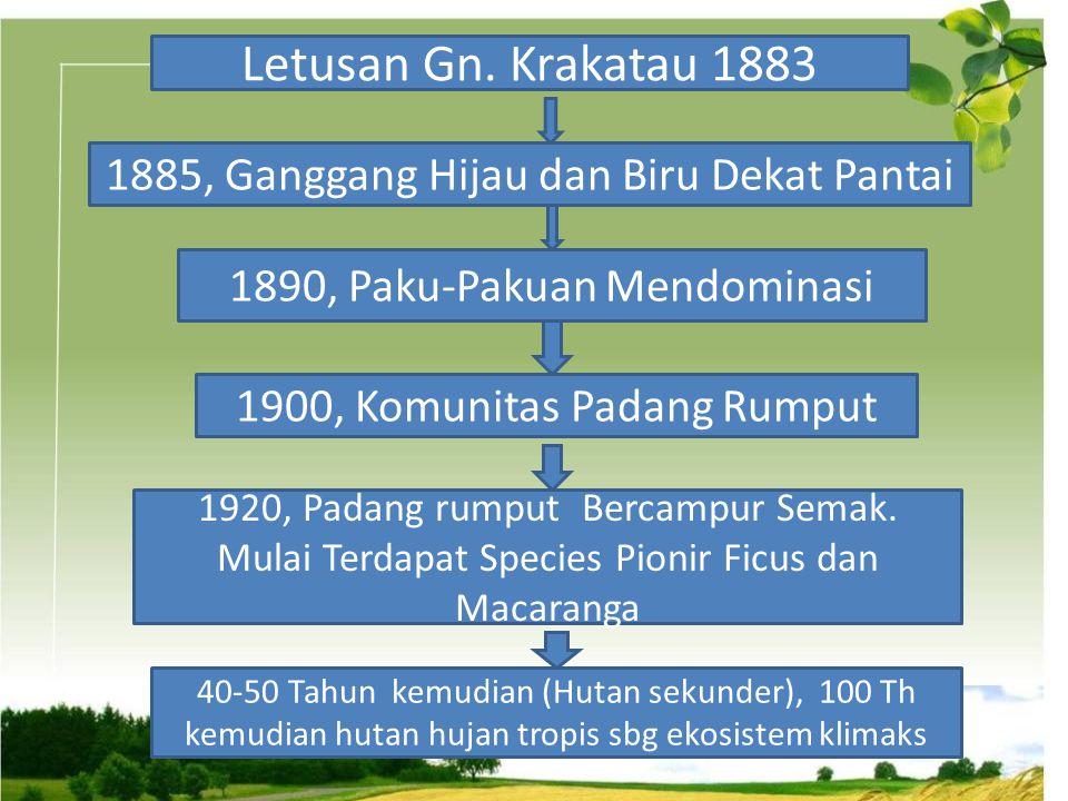 Letusan Gn. Krakatau 1883 1885, Ganggang Hijau dan Biru Dekat Pantai