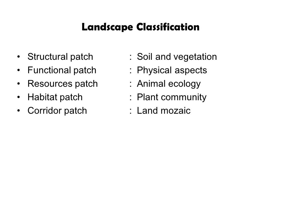 Landscape Classification