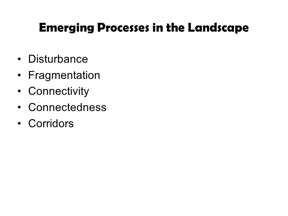 Emerging Processes in the Landscape