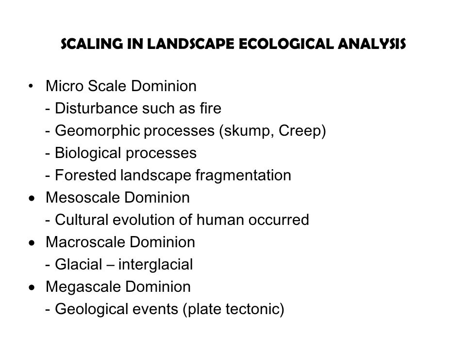 SCALING IN LANDSCAPE ECOLOGICAL ANALYSIS