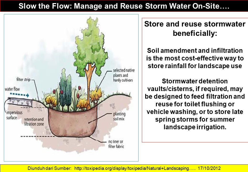 Store and reuse stormwater beneficially: