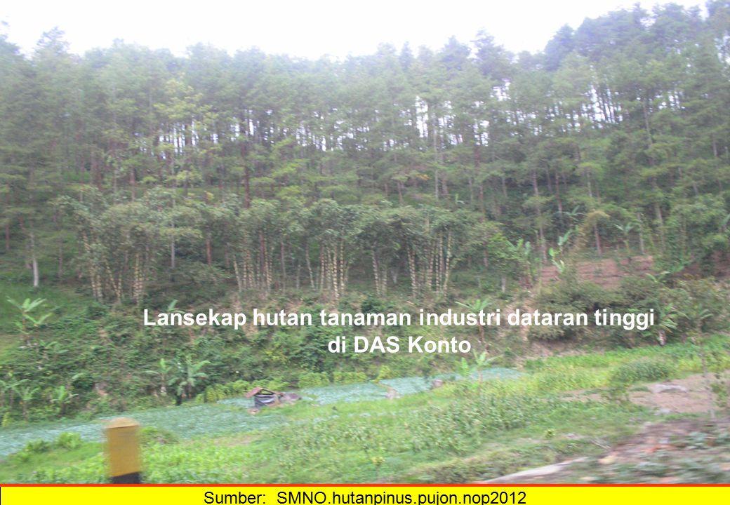 Lansekap hutan tanaman industri dataran tinggi di DAS Konto
