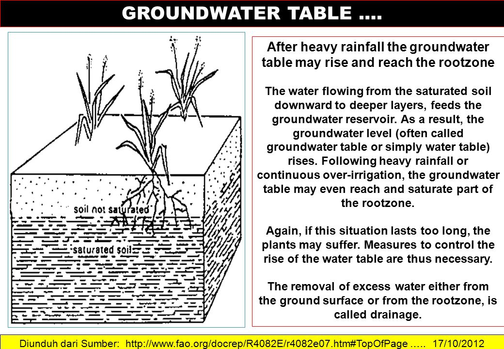 GROUNDWATER TABLE …. After heavy rainfall the groundwater table may rise and reach the rootzone.