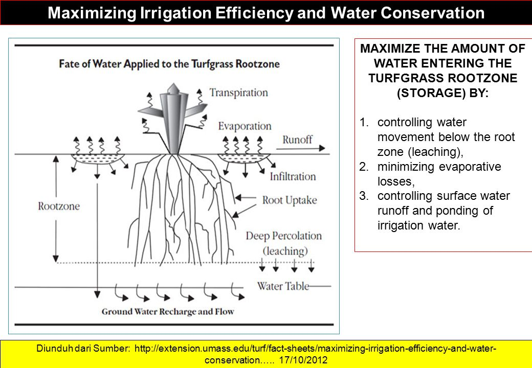 Maximizing Irrigation Efficiency and Water Conservation