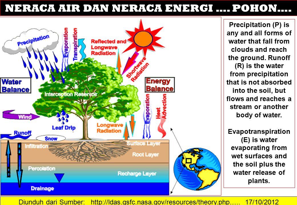NERACA AIR DAN NERACA ENERGI …. POHON….