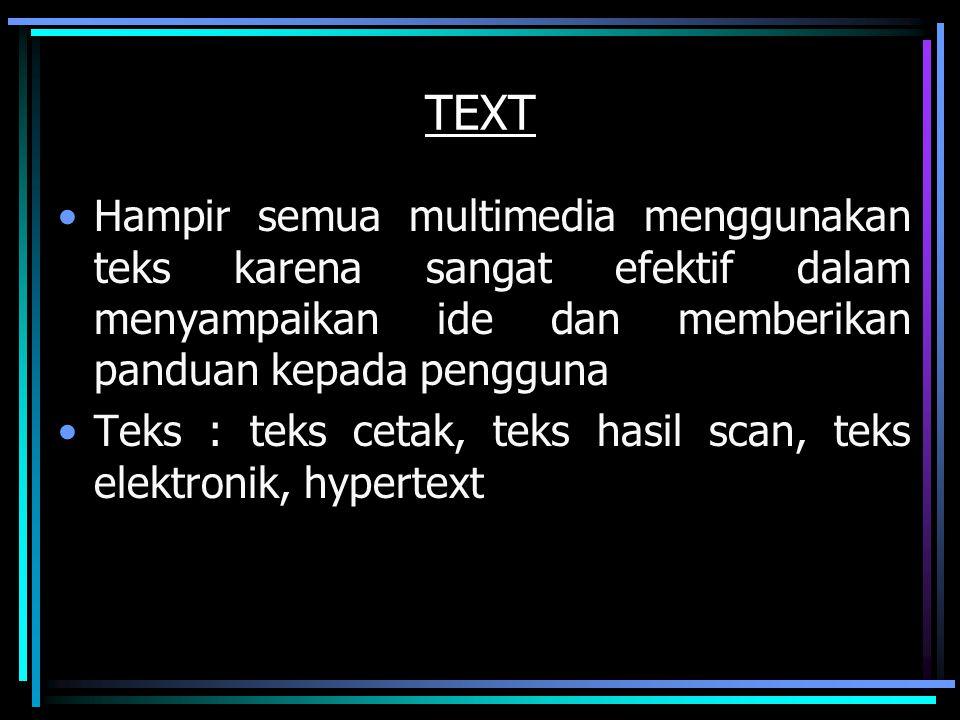 TEXT Hampir semua multimedia menggunakan teks karena sangat efektif dalam menyampaikan ide dan memberikan panduan kepada pengguna.