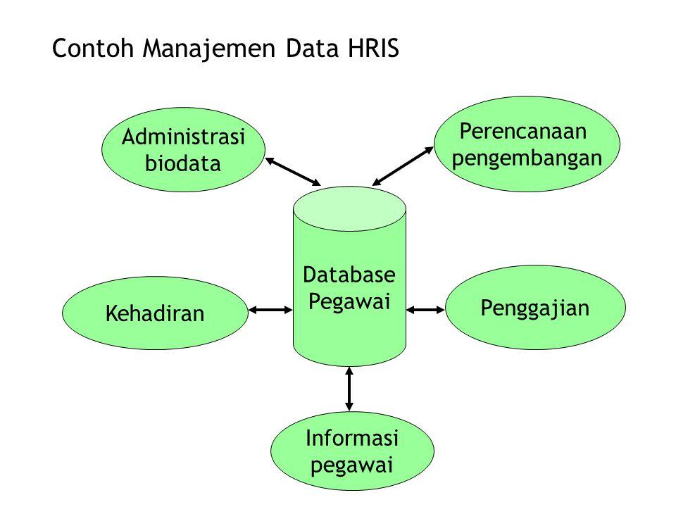 Contoh Manajemen Data HRIS