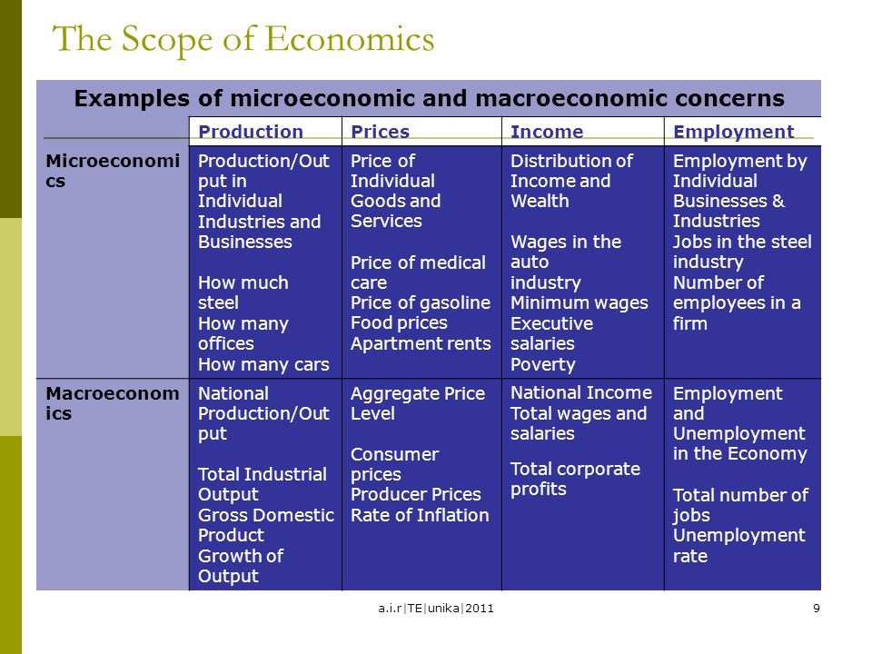 Examples of microeconomic and macroeconomic concerns