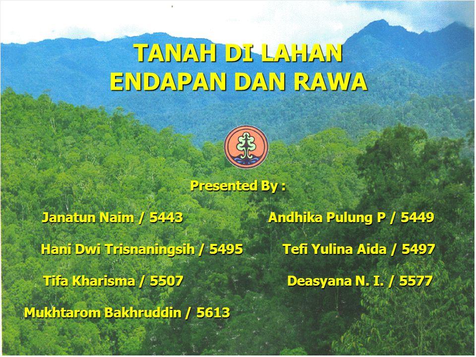 TANAH DI LAHAN ENDAPAN DAN RAWA Presented By : Janatun Naim / 5443 Andhika Pulung P / 5449 Hani Dwi Trisnaningsih / 5495 Tefi Yulina Aida / 5497 Tifa Kharisma / 5507 Deasyana N.
