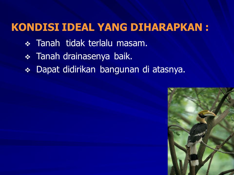 KONDISI IDEAL YANG DIHARAPKAN :