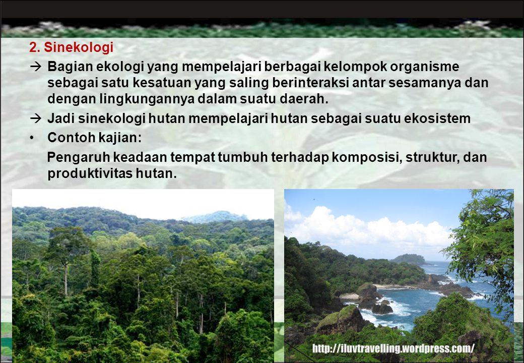 2. Sinekologi