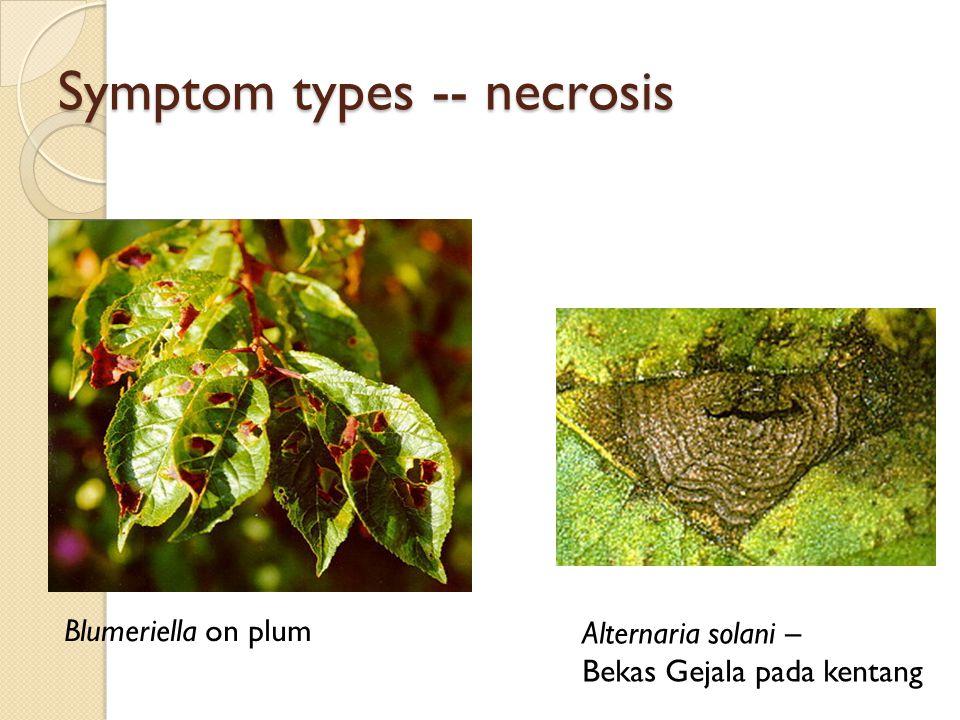 Symptom types -- necrosis
